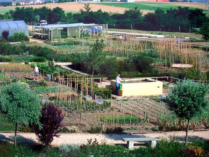 Gasteizko nekazaritza ekologikoari bultzada emango dio Aldundiak