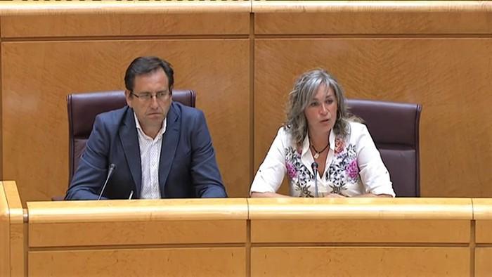 Trebiñuko auziari buruzko lantalde bat osatzea eskatu dute Espainiako Senatuan
