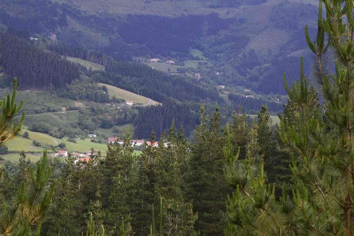 Gorbeialdea alderik alde