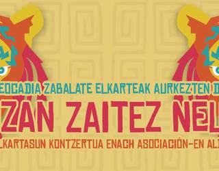 IZAN ZAITEZ NEU elkartasun kontzerturako sarrera